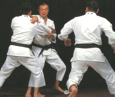 Learn Shorinji Kempo